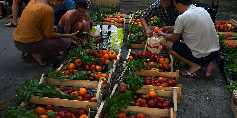 La vente directe entre agriculteurs et consommateurs prend de l'ampleur