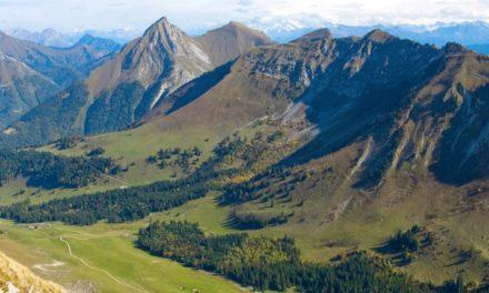 Parcs naturels régionaux : de nouveaux modèles économiques à imaginer