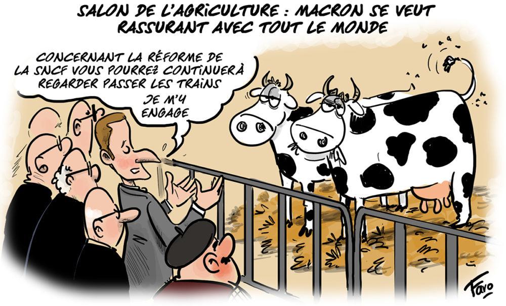 Macron au salon de l'agriculture selon Faro
