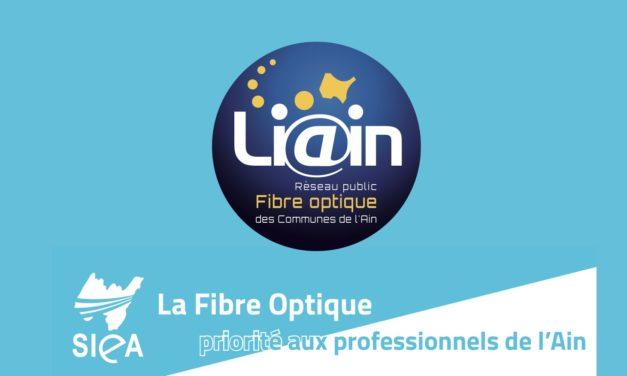 Publi-reportage / La Fibre Optique : priorité aux professionnels de l'Ain