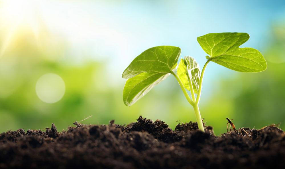 CleanTechs : le bassin lémanique, acteur des technologies vertes