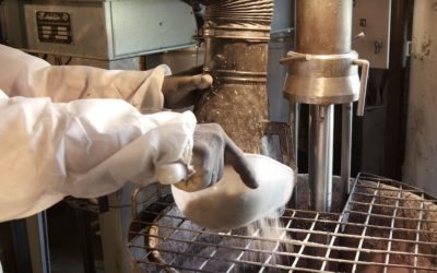 Industrie : Aluminium Martigny sisters story