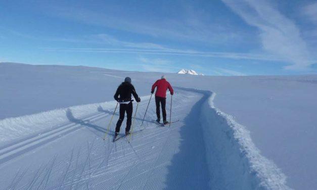 Sport : le ski nordique, toujours à fond