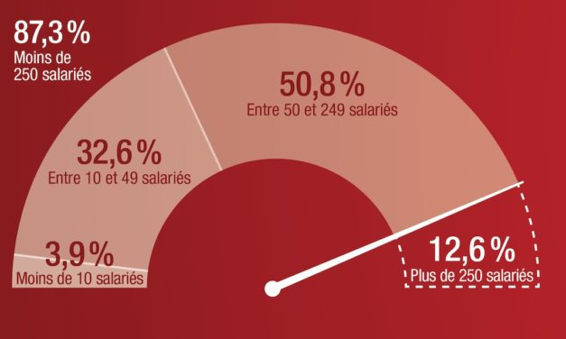 Infographie 2019 : l'essentiel du TOP 500 des entreprises en Savoie Mont Blanc