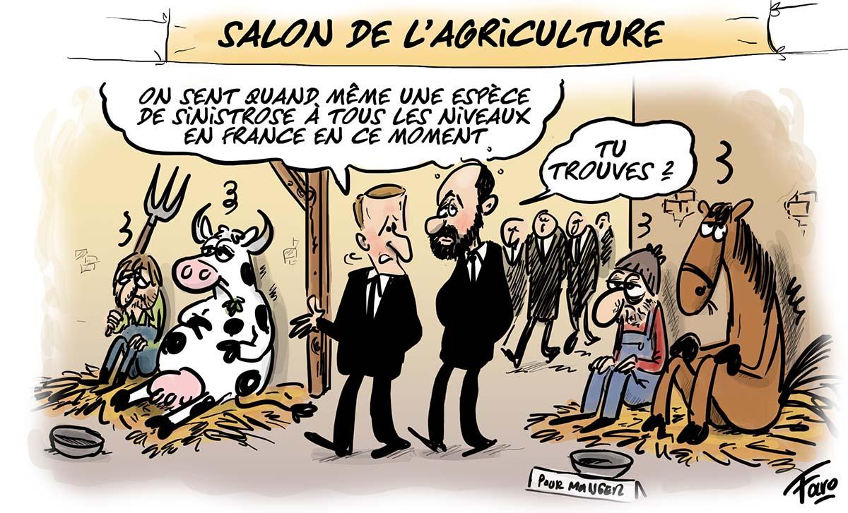 Le Salon de l'agriculture vu par Faro