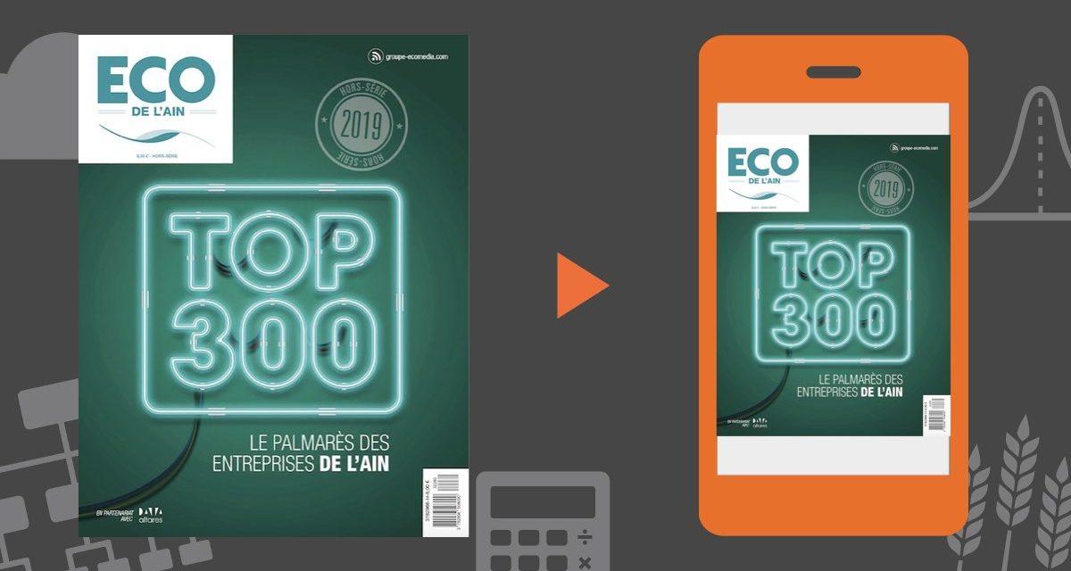 Le TOP 300 2019 des entreprises de l'Ain (01)