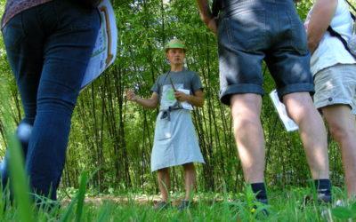 Reconnaissance nationale pour les Jardins de Lornay