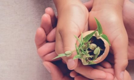 Environnement : la RSE, un enjeu  d'avenir