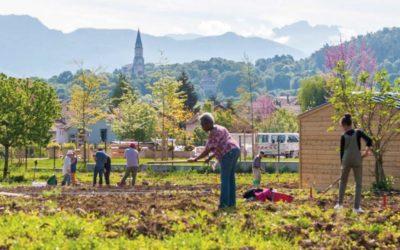 Jardins partagés : en ville, la tendance séduit