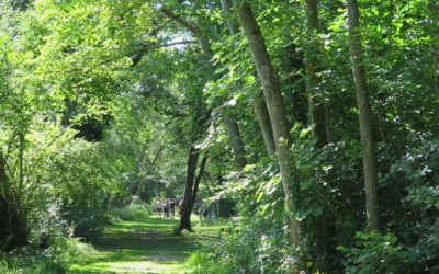 Espaces Naturels Sensibles : 57 sites de nouveau accessibles au public
