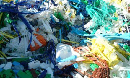 Traitement des déchets : les points de vigilance pour réduire le coût