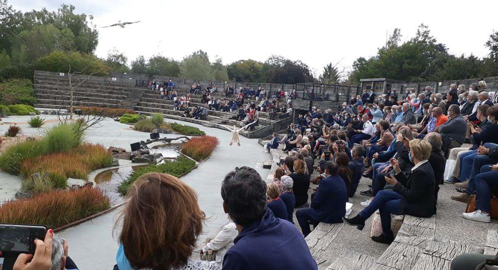 Parc des Oiseaux - Spectacle des oiseaux en vol
