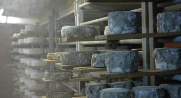 Filières : des conséquences en avalanche suite à la non-ouverture des remontées mécaniques