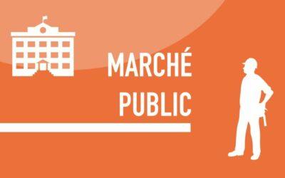 Marché public | Avis d'appel à la concurrence | Syane (74) | Mise en valeur par la lumière de la Passerelle François Baud | Morzine
