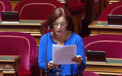 Martine Berthet : «Les travailleurs indépendants doivent être mieux protégés»
