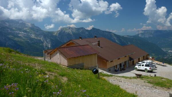 En Haute-Savoie, une première école pour les alpagistes